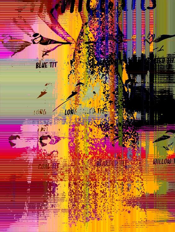4.6: groundid | Kristine Snodgrass–visual art (digital glitches)